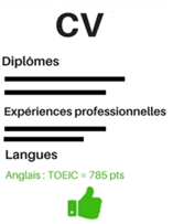 Niveau de langue dans son CV